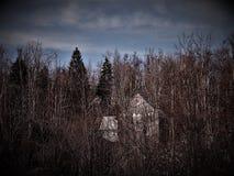 Zaniechany stary dom chujący wśród drzew świerczyna i buk, lasowa idylla unspoiled natura zdjęcie stock