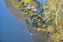 Zanieczyszczająca miasto rzeka Zdjęcia Royalty Free