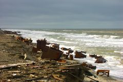 zanieczyszczenia brzegowy morze Fotografia Royalty Free