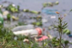 Zanieczyszczenia Pinheiros rzeka Obrazy Stock