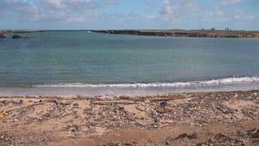 Zanieczyszczenie na plaży zbiory wideo