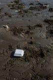 Zanieczyszczenie w brown piasku na plażowej teksturze. Zdjęcia Stock