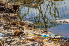 zanieczyszczenie zielona nutowa woda Fotografia Royalty Free