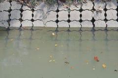 zanieczyszczona woda Obraz Stock
