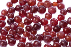 Zante Currants Isolated Stock Image
