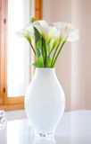 Zantedeschia aethiopica. Lily of the Nile (Zantedeschia aethiopica) flowers in a white vase. Photography very bright Royalty Free Stock Image