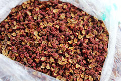 Zanthoxylum -pepper of sichuan Stock Photos