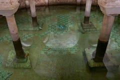 Zanurzaj?cy crypt bazylika San Francesco dok?d goldfish p?ywanie obraz stock