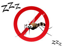 Zanzara Immagini Stock