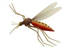 Zanzara di volo Immagini Stock