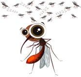 Zanzara divertente del fumetto su un fondo bianco Fotografia Stock