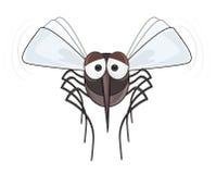 Zanzare - FERMI la zanzara Fotografia Stock
