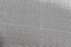 Zanzariera per la finestra Immagine Stock