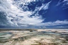 Zanzibar stock fotografie