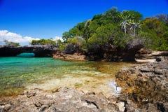Zanzibar. Tropical landscape Island of Zanzibar Tanzania Royalty Free Stock Photos