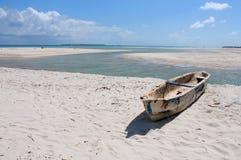 Zanzibar Immagini Stock Libere da Diritti