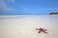 Zanzibar beach. Crystal clear waters at Zanzibar beach in Tanzania Stock Images