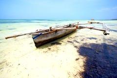 Zanzibar beach      seaweed   indian ocean tanzania Stock Photos
