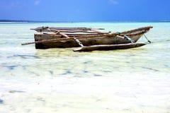 Zanzibar beach  seaweed in indian ocean tanzania    sand Royalty Free Stock Photography