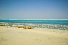 Zanzibar beach Tanzania Royalty Free Stock Images