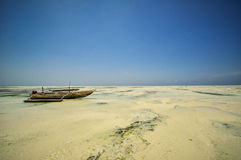Zanzibar beach Tanzania Royalty Free Stock Photography