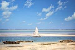 Zanzibar coastline Royalty Free Stock Photo