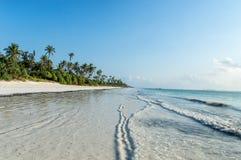 Zanzibar. A deserted beach on the tropical island of Zanzibar Royalty Free Stock Image