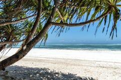 Zanzibar. A deserted beach on the tropical island of Zanzibar Stock Photo