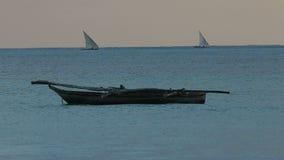 Zanzibar dhows at sunrise stock video footage