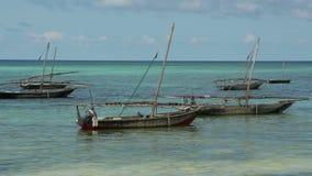Zanzibar dhows stock video footage