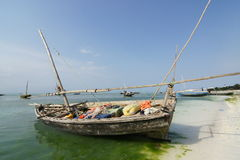 Zanzibar Nunwi Royalty-vrije Stock Foto