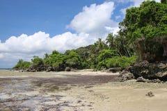 Zanzibar plaża fotografia stock