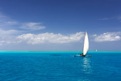 Zanzibar sailing Royalty Free Stock Photography