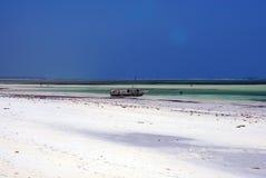 Zanzibar strand royaltyfria foton