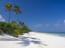 Zanzibar strand Arkivbild
