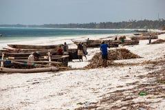 Zanzibar strandfiskare och fartyg Royaltyfria Foton