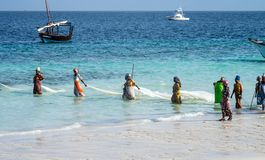 Zanzibar Tanzania, East Africa - Juni 23, 2017: Afrikanska kvinnor från ett fiskeläge fångar den lilla fisken av kusten av royaltyfri foto