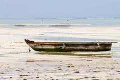 Unknown child on fishing boat in low tide. ZANZIBAR, TANZANIA - JANUARY 05: Unknown child on a fishing boat in low tide ocean on Paje beach, Zanzibar, Tanzania Stock Image