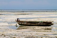 Unknown child on fishing boat in low tide. ZANZIBAR, TANZANIA - JANUARY 05: Unknown child on a fishing boat in low tide ocean on Paje beach, Zanzibar, Tanzania Royalty Free Stock Image