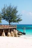 Zanzibar - Tropics - Prison Island beach. Zanzibar - Prison Island beach and torquoise sea - Indian Ocean royalty free stock photos
