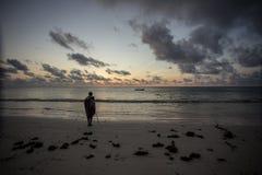 Zanzibar, turkooise overzees, unieke aard, paradijseiland stock afbeeldingen