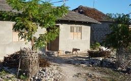 Zanzibar village, Tanzania. Simple street in African village, Zanzibar island, Tanzania Royalty Free Stock Image