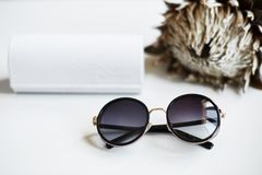 Zaokrągleni eleganccy, modni okulary przeciwsłoneczni z i Zdjęcie Royalty Free