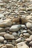 Zaokrągleni otoczaki na plaży Beżowi otoczaki na kamieniu i plaży rozszczepiają w połówce zdjęcia royalty free