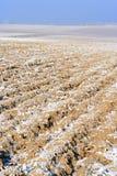zaorana pole zima Obrazy Stock