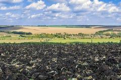 Zaorany pole po zbierać kukurudzy z ciągnikowy zupełnym z ciało pługiem przeciw niebu i krajobrazowi zdjęcie stock