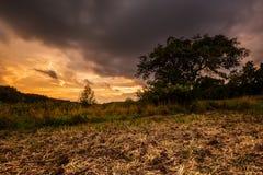 Zaorany pole przy zmierzchem i gęstymi chmurami fotografia royalty free