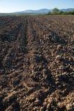 Zaorany pole w wiośnie Obraz Royalty Free