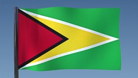Zapętlać flaga Guyana ilustracji
