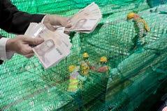 Zapłata dla pracownika przy budową Zdjęcie Stock